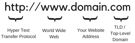 domainanatomy