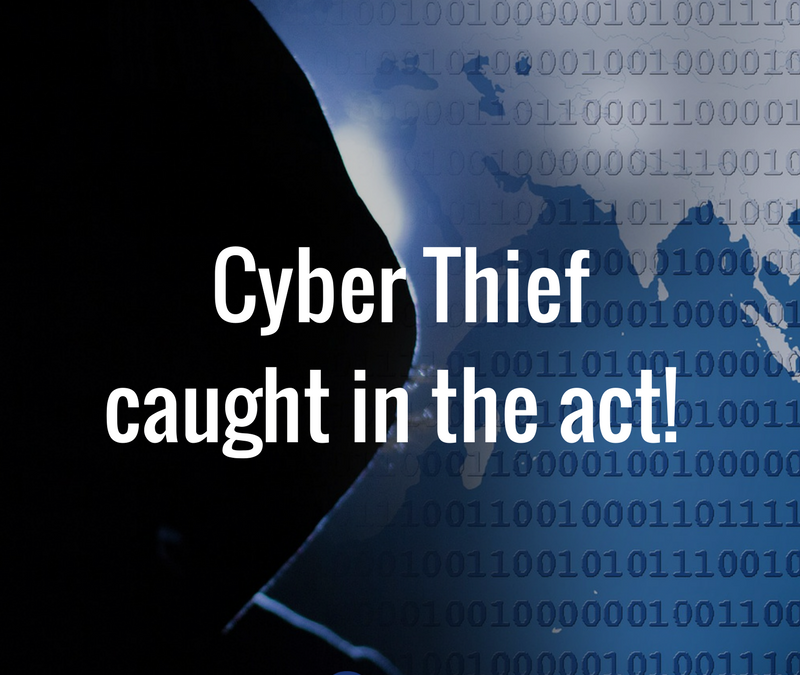 Cyber Thief Caught In the Act!